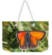 18 Balkan Copper Butterfly Weekender Tote Bag