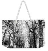 Pere-lachais Cemetery In Paris France Weekender Tote Bag
