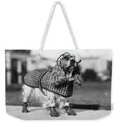 1930s Cocker Spaniel Wearing Glasses Weekender Tote Bag
