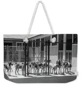 1930s Kennel Yard Full Of Foxhound Dogs Weekender Tote Bag