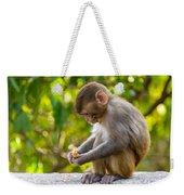 A Baby Macaque Eating An Orange Weekender Tote Bag