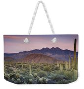 A Desert Sunset  Weekender Tote Bag