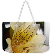 Alstroemeria Named Marilene Staprilene Weekender Tote Bag