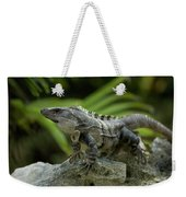 An Iguana Sunbathes In The Ancient Weekender Tote Bag