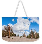 Ancient Panorama - Bristlecone Pine Forest Weekender Tote Bag