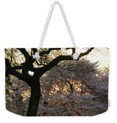 Angry Trees At Sunset Weekender Tote Bag