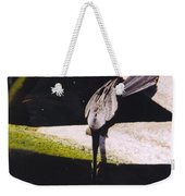 Anhinga Or Snake Bird Weekender Tote Bag