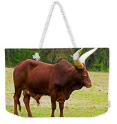 Ankole-watusi Cattle Weekender Tote Bag