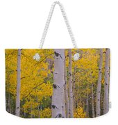 Aspen Trees In A Forest, Telluride, San Weekender Tote Bag
