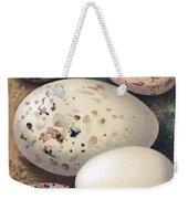 Assorted Birds Eggs, Historical Art Weekender Tote Bag