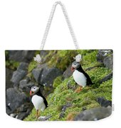 Atlantic Puffin, Fratercula Arctica Weekender Tote Bag