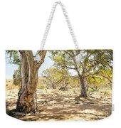 Australian Outback Oasis Weekender Tote Bag