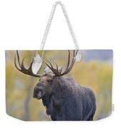 Autumn Bull Moose IIi Weekender Tote Bag