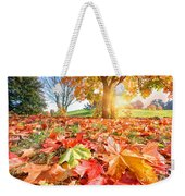 Autumn Fall Landscape In Park Weekender Tote Bag