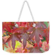 Autumnal Liquidambar Leaves Weekender Tote Bag