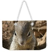 Baby Rock Squirrel Weekender Tote Bag