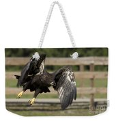 Bald Eagle In Flight Photo Weekender Tote Bag