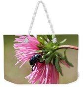 Beetle Weekender Tote Bag