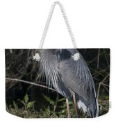 Birds Of The Lowcountry Weekender Tote Bag