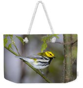 Black Throated Green Warbler Weekender Tote Bag