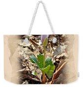 Bloodroot Wildflower - Sanguinaria Canadensis Weekender Tote Bag