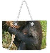 Bonobo Weekender Tote Bag