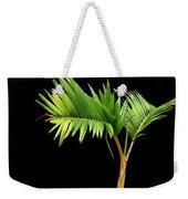 Bonsai Palm Tree Weekender Tote Bag