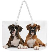 Boxer Puppies Weekender Tote Bag