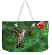 Bronzy Inca Hummingbird Weekender Tote Bag