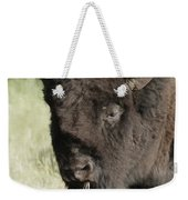 Buffalo Painterly Weekender Tote Bag
