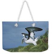 Bullers Albatross With Colorful Bill Weekender Tote Bag