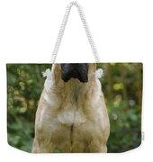 Bullmastiff Dog Weekender Tote Bag
