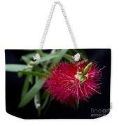 Callistemon Citrinus - Crimson Bottlebrush Hawaii Weekender Tote Bag