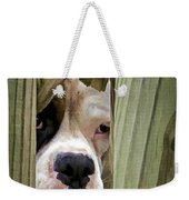 Can I Come Over And Play Weekender Tote Bag