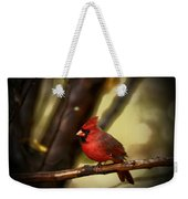 Cardinal Pose Weekender Tote Bag