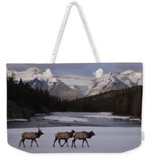 Elk Crossing, Banff National Park, Alberta Weekender Tote Bag