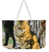 Cats In Hydra Island Weekender Tote Bag
