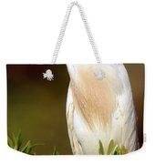 Cattle Egret Adult In Breeding Plumage Weekender Tote Bag