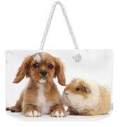 Cavalier King Charles Spaniel Pup Weekender Tote Bag