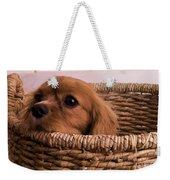 Cavalier King Charles Spaniel Puppy In Basket Weekender Tote Bag