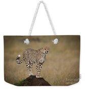 Cheetah On Termite Mound Weekender Tote Bag