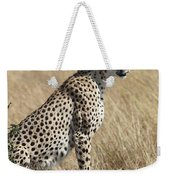 Cheetah Searching For Prey Weekender Tote Bag