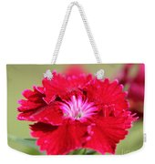 Cherry Dianthus From The Floral Lace Mix Weekender Tote Bag