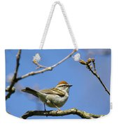 Chipping Sparrow Perched In A Tree Weekender Tote Bag