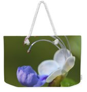 Clerodendrum Ugandense Or Blue Butterfly Bush Weekender Tote Bag