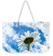 Close-up Shot Of White Daisy Flowers From Below Weekender Tote Bag