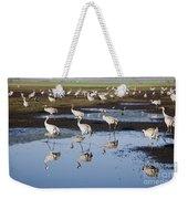 Common Crane Grus Grus Weekender Tote Bag