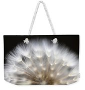 Dandelion Backlit Close Up Weekender Tote Bag