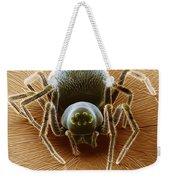 Dictynid Spider Weekender Tote Bag by David M. Phillips