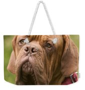 Dogue De Bordeaux Weekender Tote Bag